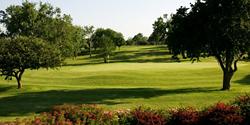 Dubs Dread Golf Club